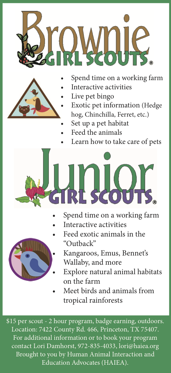 Girl Scout Badges – H A I E A